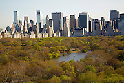 Central Park and midtown from 211 Central Park West