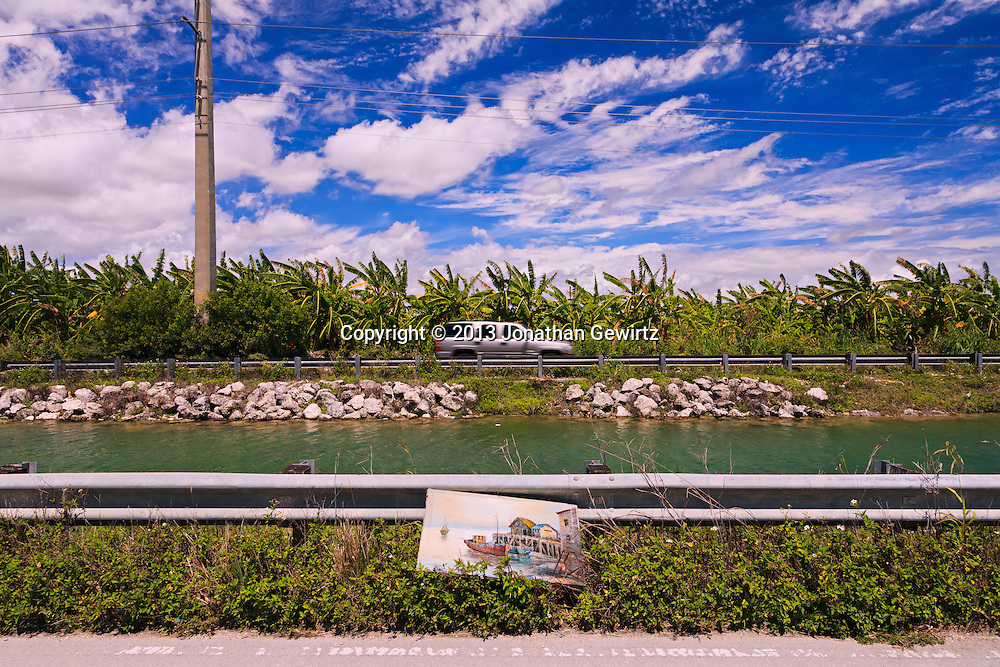 A nautical-themed painting lies discarded along a South Florida canal. WATERMARKS WILL NOT APPEAR ON PRINTS OR LICENSED IMAGES.