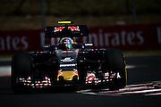 July 21-24, 2016 - Hungarian GP, Daniil Kvyat, (RUS), Red Bull-Renault