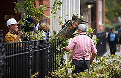 © Licensed to London News Pictures. 20/09/2018. London, UK. Council workers assess damage at the scene where a tree has been blown over in high winds in Kensington, West London, hitting a residential building, causing damage and breaking a window. Parts of the UK have been battered by Storm Ali.Photo credit: Ben Cawthra/LNP