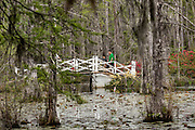 A family walks across a small bridge in the blackwater bald cypress and tupelo swamp during spring at Cypress Gardens April 9, 2014 in Moncks Corner, South Carolina.
