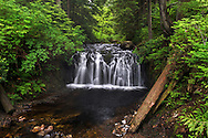 Rolley Creek Falls along Rolley Creek in Rolley Lake Provincial Park near Mission, British Columbia, Canada