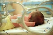 Belo Horizonte_MG, Brasil...Recem nascido em uma encubadora...A newborn in an incubator...FOTO: BRUNO MAGALHAES /  NITRO