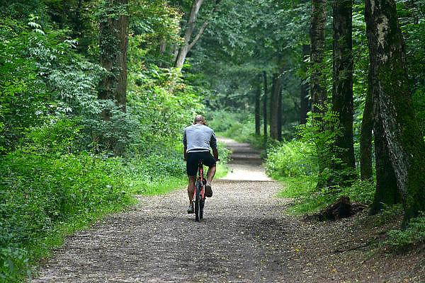 Nederland, Berg en Dal, 13-7-2014Het bos wordt door veel mensen gebruikt als plek voor recreatie. het Rijk van Nijmegen kent een gevarieerd landschap en is rijk aan bossen.FOTO: FLIP FRANSSEN/ HOLLANDSE HOOGTE