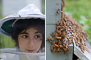 Young Bee Keeper and Bee Hive