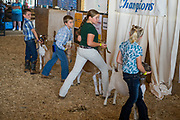July  13, 2017.    <br /> Madison County Fair 2017.<br /> #MadisonCountyFairVA