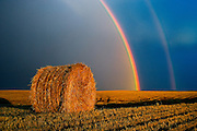 Double rainbow and bale after prairie storm<br /> Near Cypress River<br /> Manitoba<br /> Canada