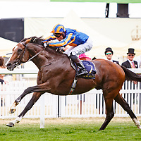 Idaho (S. Heffernan) wins The Hardwicke Stakes (Gr.2), Royal Ascot 24/06/2017, photo: Zuzanna Lupa / Racingfotos.com
