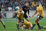 Wallabies' Will Genia in action during the All Blacks v Wallabies. The Rugby Championship &amp; Bledisloe Cup at Westpac Stadium, Wellington, New Zealand on Saturday 27 August 2016.<br /> Photo by Masanori Udagawa. <br /> www.photowellington.photoshelter.com.