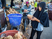 18 JUNE 2015 - PATTANI, PATTANI, THAILAND: A woman looks at coconut husks in the market in Pattani. Many Thai Muslims go shopping early in the day to buy food for Iftar, the meal that breaks the day long Ramadan fast.    PHOTO BY JACK KURTZ