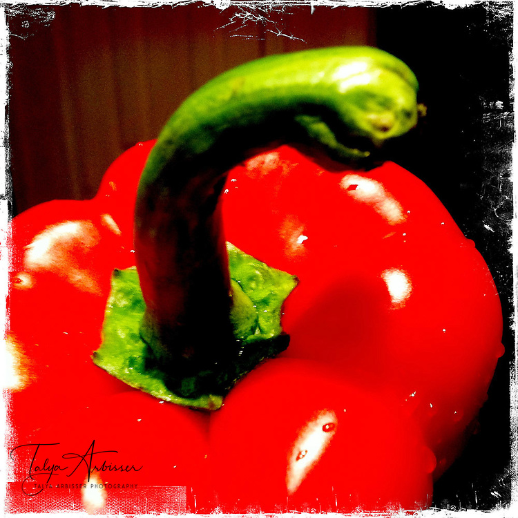 Red bell pepper - Houston, Texas