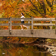 A woman runs over a bridge on a wooded trail in Rock Creek Park in Washington DC under Autumn leaves.