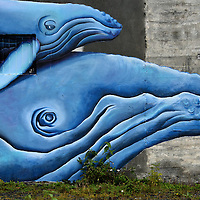 Seward Bound Whale Mural by Pechuzal and McElroy in Seward, Alaska <br />