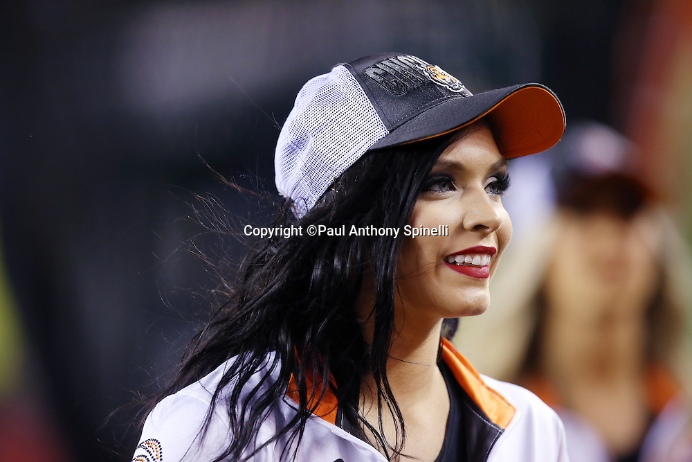 A Cincinnati Bengals cheerleader looks on from the sideline during the NFL AFC Wild Card playoff football game against the Pittsburgh Steelers on Saturday, Jan. 9, 2016 in Cincinnati. The Steelers won the game 18-16. (©Paul Anthony Spinelli)