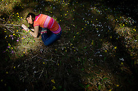 Rhianna Hohbein crouches down within a spot of sunlight as she finds an angle to get a photo of wildflowers while out with her North Idaho College photography class Monday on Tubbs Hill.