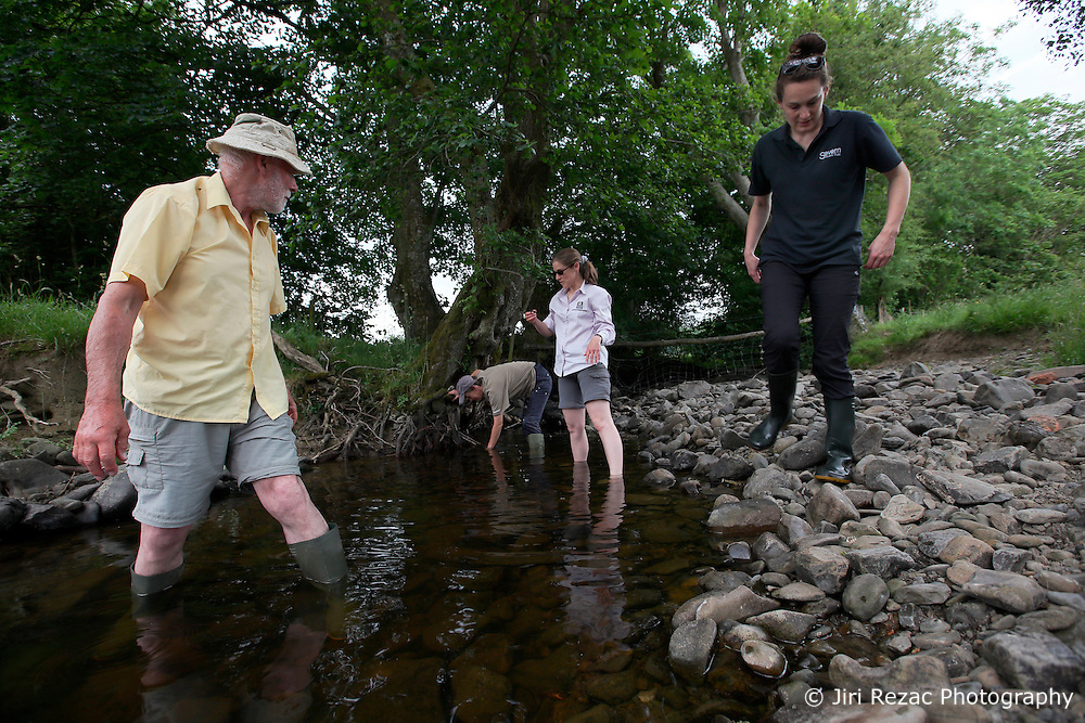 UK ENGLAND WALES LLANERFYL 1JUL15 - Crayfish sampling by volunteers in a tributary steam to the Banwy river near Llanerfyl, Wales, in the river Severn catchment area.<br /> <br /> jre/Photo by Jiri Rezac / WWF UK<br /> <br /> © Jiri Rezac 2015