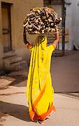 Indian woman in yellow sari carrying wood logs overhead (India)