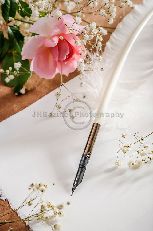 White quill on blank parchment paper surrounded by soft flowers.