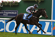 SASSIE (7) ridden by Paul Hanagan and trained by Michael Easterby winning The Free Bets For Lengths With Coral Stakes over 2m (£15,000)  during the York Coral Sprint Trophy meeting at York Racecourse, York, United Kingdom on 12 October 2019.