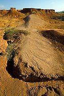 El desierto del Sarigua, también conocido como el Parque Nacional Sarigua, está ubicado en el distrito de Parita, Provincia de Herrera en Panamá. Tiene una superficie de 8 000 hectáreas y también es el único desierto de la República de Panamá.1<br /> <br /> Este desierto tiene una antigüedad de más de 11 000 años, el cual es una de las zonas más antiguas de Panamá y es considerado como una de las tierras más secas del país.<br />  <br /> El desierto cuenta con una gran variedad de especies de flora como los manglares y el laurel. La fauna está representada por los pelícanos, el alcedines y abundantes mariposas.<br /> <br /> ©Alejandro Balaguer/Fundación Albatros Media.