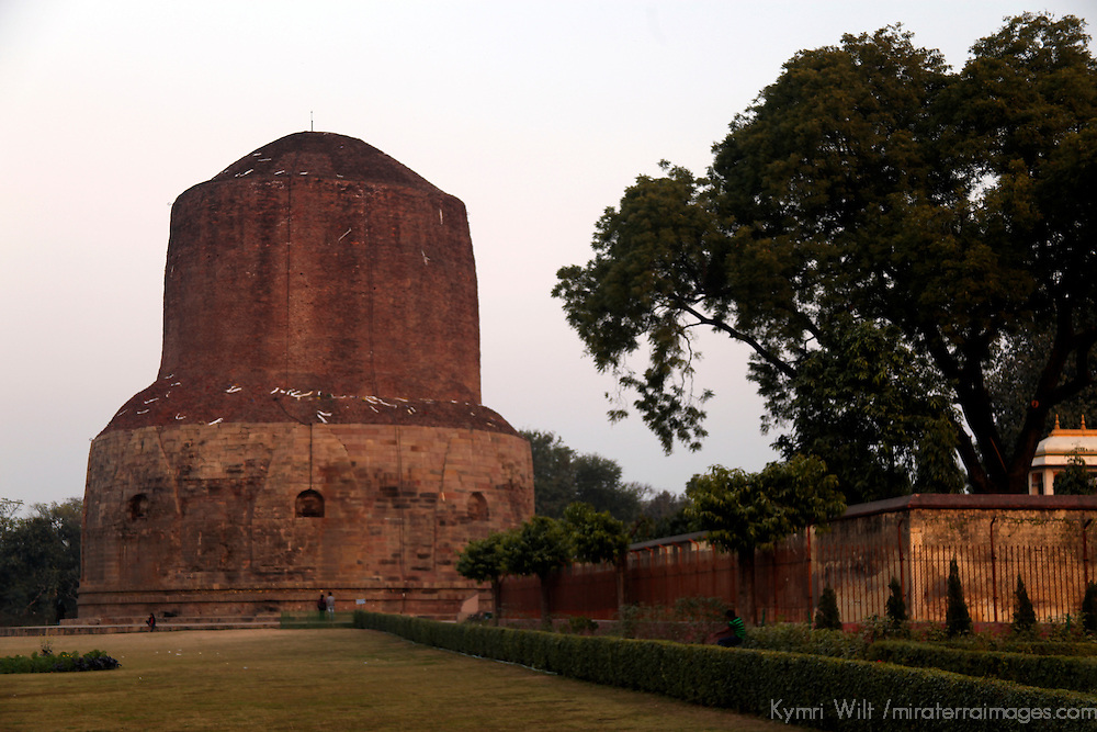 Asia, India, Sarnath. Buddhist Dharmekh Stupa, at the site of Buddha's first sermon.