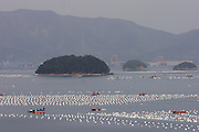 Oyster farm near Tongyeong, Hallyeo Maritime National Park.