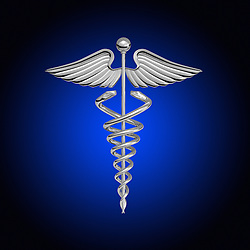 Chrome caduceus over a white background