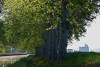 France, Languedoc-Roussillon, Herault (34), Capestang, la collegiale Saint Etienne et le Canal du Midi // France, Languedoc-Roussillon, Herault depatment, Capestang, Saint Etienne Church (collegialel) and Canal du Midi