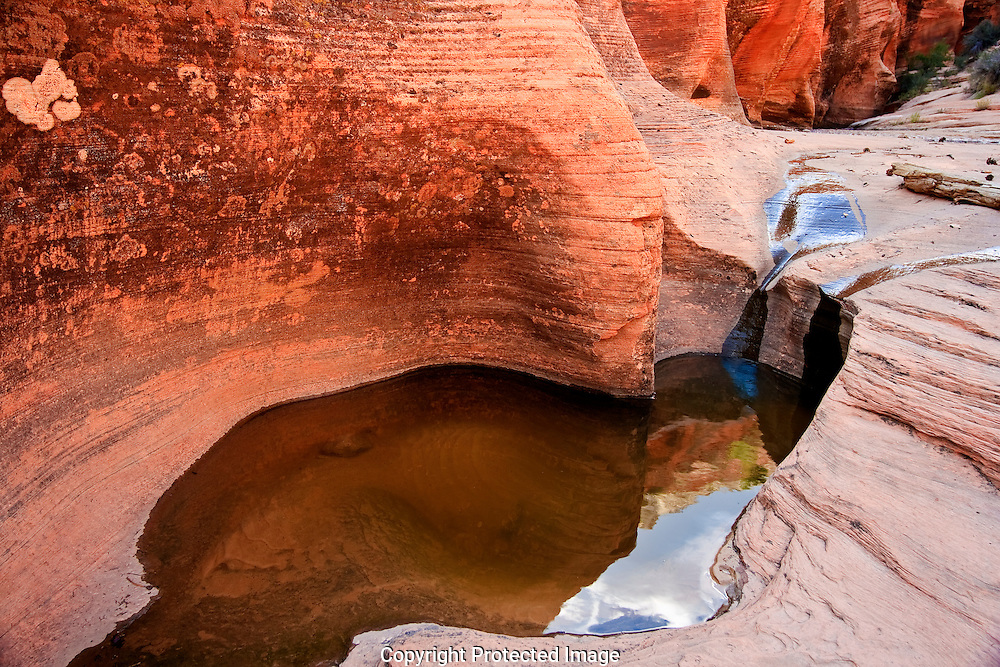As evening comes over Zion NP, water from recent thunderstorms, pool in the Navajo sandstone of slot canyons in Zions East mesa. The reflections in these pools, not only brings new life to the canyon, they also bring renewed life to the viewer.