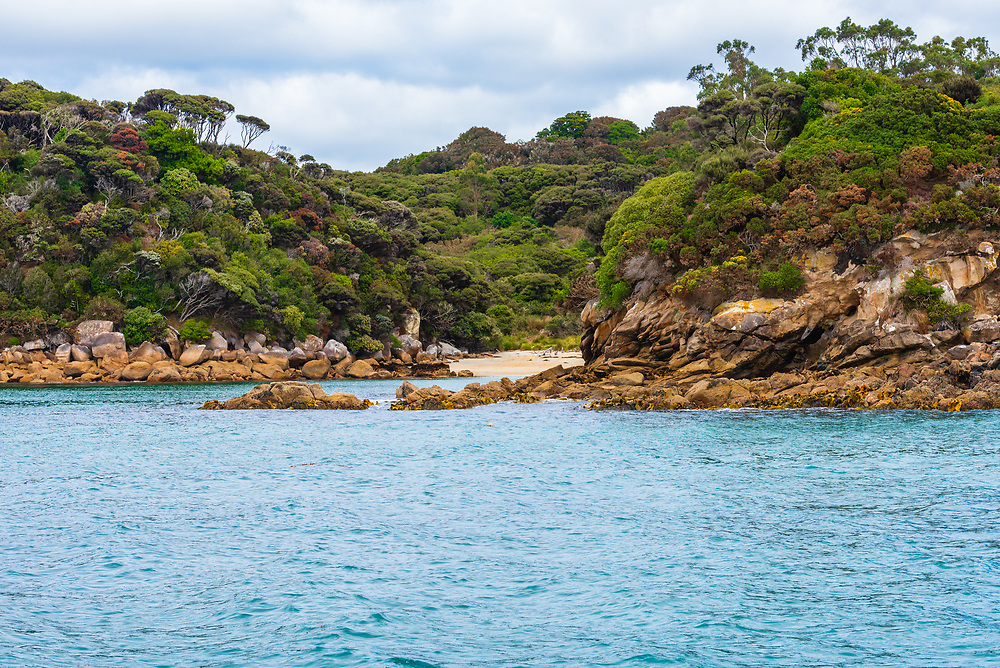 A small beach pops out of the forest along the rocky coast of Stewart Island, New Zealand.