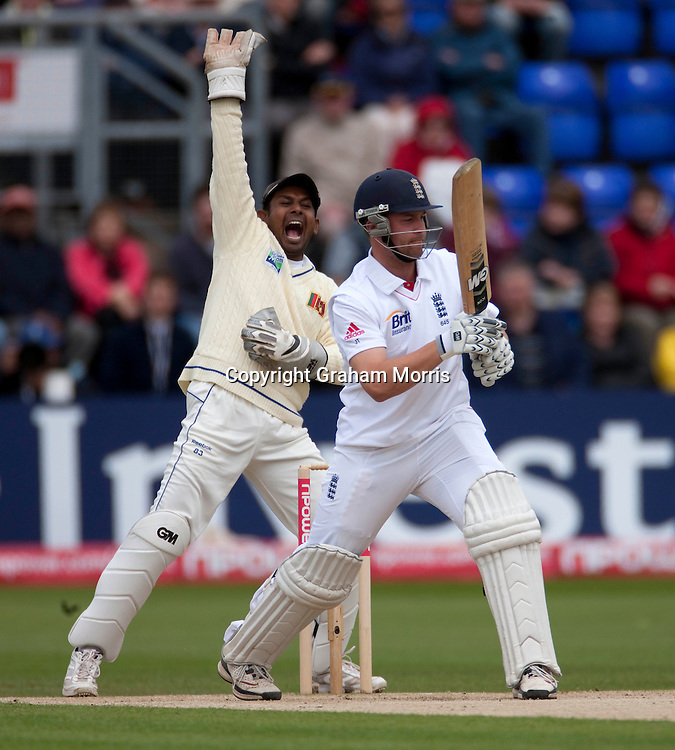 Wicket keeper Prasanna Jayawardene appeals but Jonathan Trott is not out lbw first ball during the first npower Test Match between England and Sri Lanka at the SWALEC Stadium, Cardiff.  Photo: Graham Morris (Tel: +44(0)20 8969 4192 Email: sales@cricketpix.com) 28/05/11