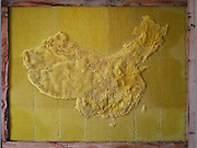 "Artist works with Bees To Create Beautiful maps of the the world using bees wax<br /> <br /> Ren Ri cooperated with bees to create art works"" Yuansu series"". Yuansu . Yuansu II, which is built on acrylic boxes, is the art work made when cooperating with bees.<br /> <br /> Ren Ri  said ""I change the gravity direction of the honeycomb every seven days by rotating the box. In the whole Yuansu series, I try to eliminate the absolute domination of the artist. Bees cooperating with artist can be seen as a relationship between human and nature'<br /> <br /> Photo shows: Map of China<br /> ©Ren Ri/Exclusivepix Media"