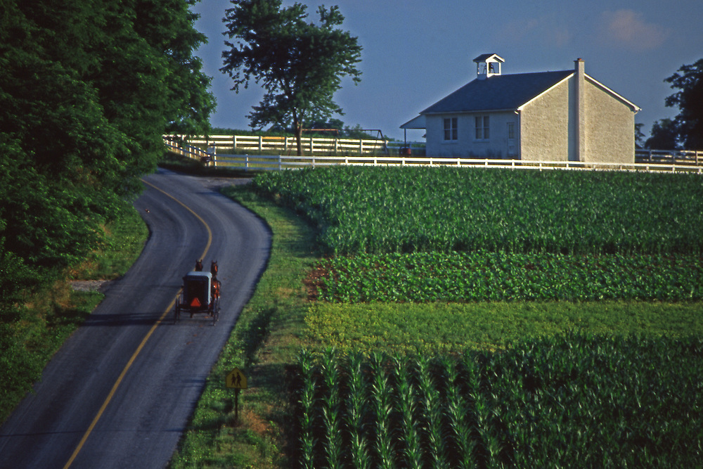Amish buggy on rural road with Amish schoolhouse, Lancaster Co., PA
