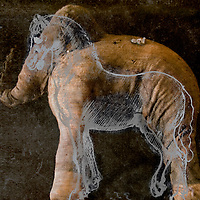 montage of a horse and an elephant