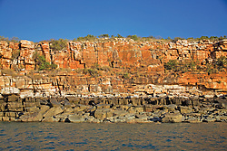 The iconic Kimberley coast tideline is evident on these cliffs at Hall Point in Deception Bay.  The tideline is caused by algal growth in the intertidal zone.  The white line marks the height of the highest spring tide.