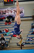 Champlin Park freshman Liz Hammond flips during her floor exercise at the dual gymnastics meet against Coon Rapids High School at Champlin Park, Friday, January 31, 2014. Hammond won the floor exercise with a score of 9.5.