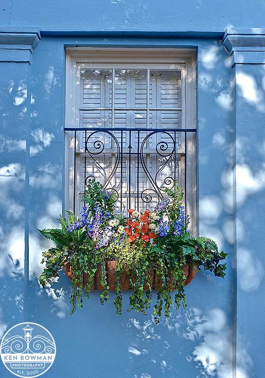 Charleston East Bay Street #85 blue window box.