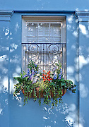 Charleston East Bay Street #85 blue window box.