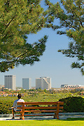 A visitor Relaxes At A Park And Views Fashion Island From Across The Back Bay Newport Beach, California