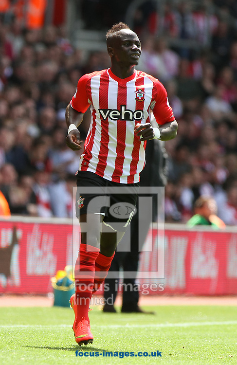 Sadio Man&eacute; of Southampton during the Barclays Premier League match at the St Mary's Stadium, Southampton<br /> Picture by Tom Smith/Focus Images Ltd 07545141164<br /> 16/05/2015