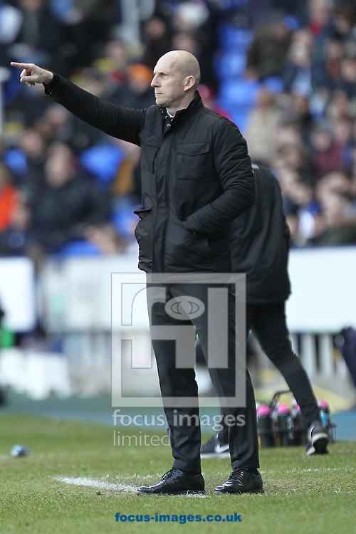 Reading Manager Jaap Stam during the Sky Bet Championship match at the Madejski Stadium, Reading<br /> Picture by Paul Chesterton/Focus Images Ltd +44 7904 640267<br /> 26/12/2016