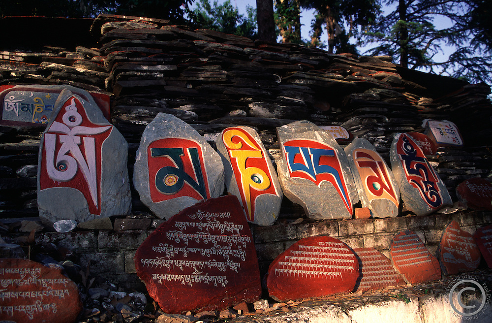 Om Mani Padme Hum is a special prayer carved in Mani stones in Dharamsala.