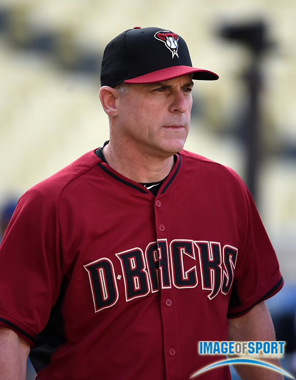 Apr 13, 2016; Los Angeles, CA, USA; Arizona Diamondbacks manager Chip Hale before a MLB game against the Los Angeles Dodgers at Dodger Stadium.