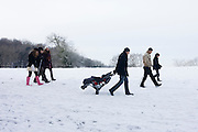 Dragging a baby's buggy as family members go out for a walk on open snowbound countryside in North Somerset.