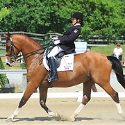 2010 WindReach International Para-Dressage CPEDI3*
