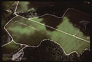 Aerial view of farm lands carved out of the Amazon jungle north of Manaus; month of June. Brazil