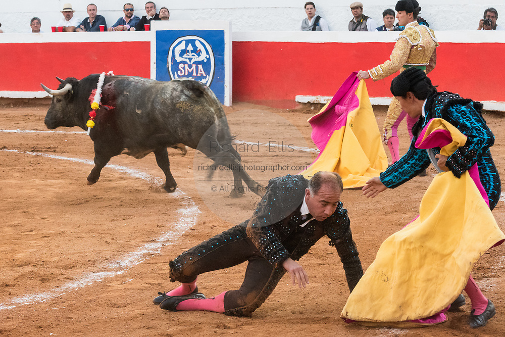 A bull knocks a banderillero down during a bullfight at the Plaza de Toros March 3, 2018 in San Miguel de Allende, Mexico.