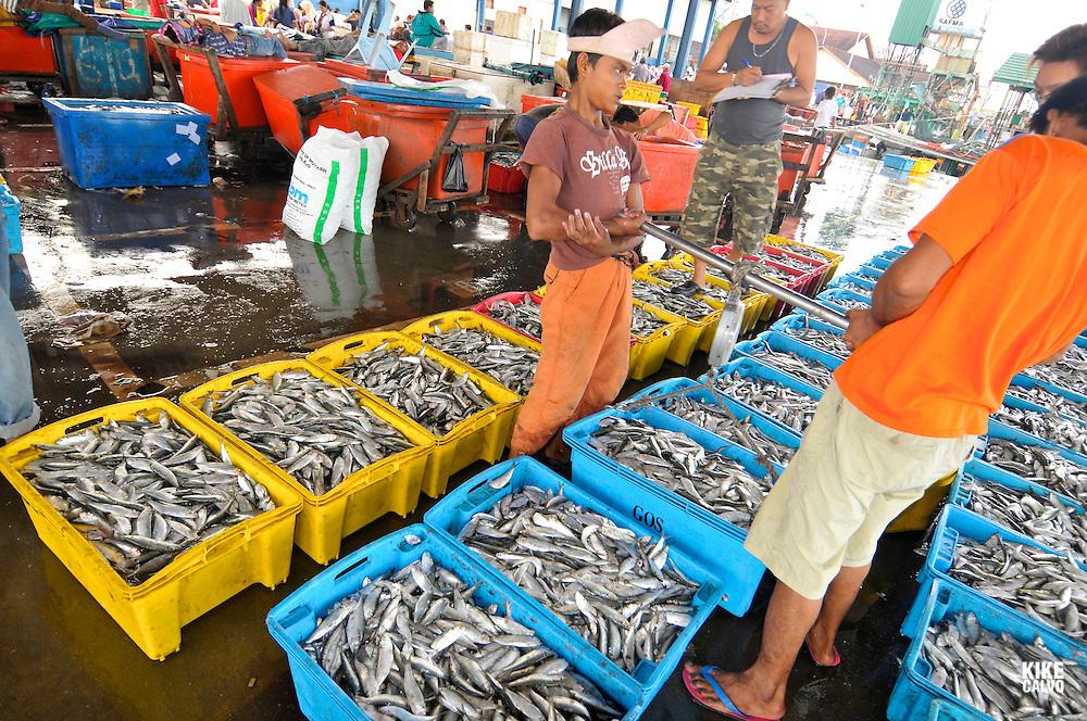 Fish or Wet Market in Kota Kinabulu, capital of Sabah, Northern Borneo. Malaysia