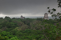The spectacular Mayan ruins of Tikal are enveloped in lush Guatemalan jungle.