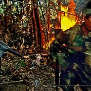 Bolivian counter-narcotics unit destroys cocaine lab. Chapare, Bolivia.
